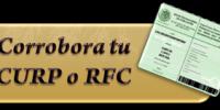 curp rfc