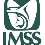 Dictamen Fiscal IMSS 2013